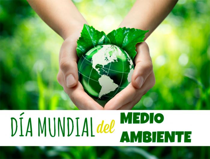Actualidad Actualidad En el Día Mundial del Medio Ambiente, Anpier recuerda que sin el desarrollo de la tecnología fotovoltaica no sería posible combatir los efectos del cambio climático