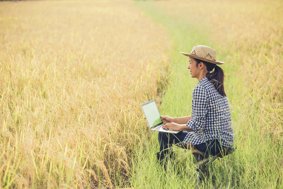 Actualidad Actualidad Las mujeres ganan terreno en el sector del turismo rural
