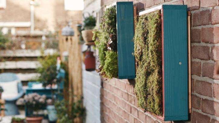 Actualidad Actualidad Bosch Home&Garden nos ayuda a construir un jardín vertical para tu hogar