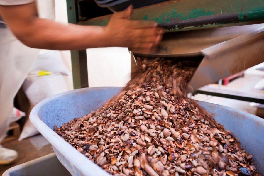 Actualidad Actualidad 13 de septiembre: Una fecha para volver a relatar la historia del chocolate
