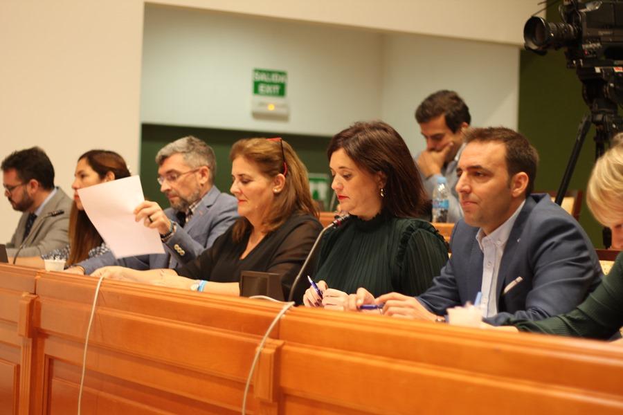 Torremolinos Torremolinos La concejala socialista Maribel Tocón usa de forma fraudulenta el funcionamiento del pleno:  El Partido Popular estudiará tomar acciones legales contra la portavoz del PSOE