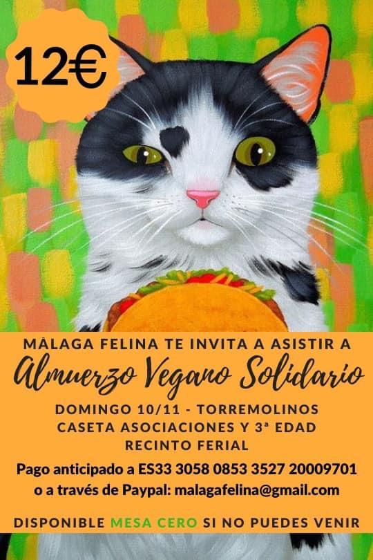 Torremolinos Torremolinos Malaga Felina organiza este domingo en la caseta de Asociaciones y 3ª edad de Torremolinos el Almuerzo Vegano Solidario