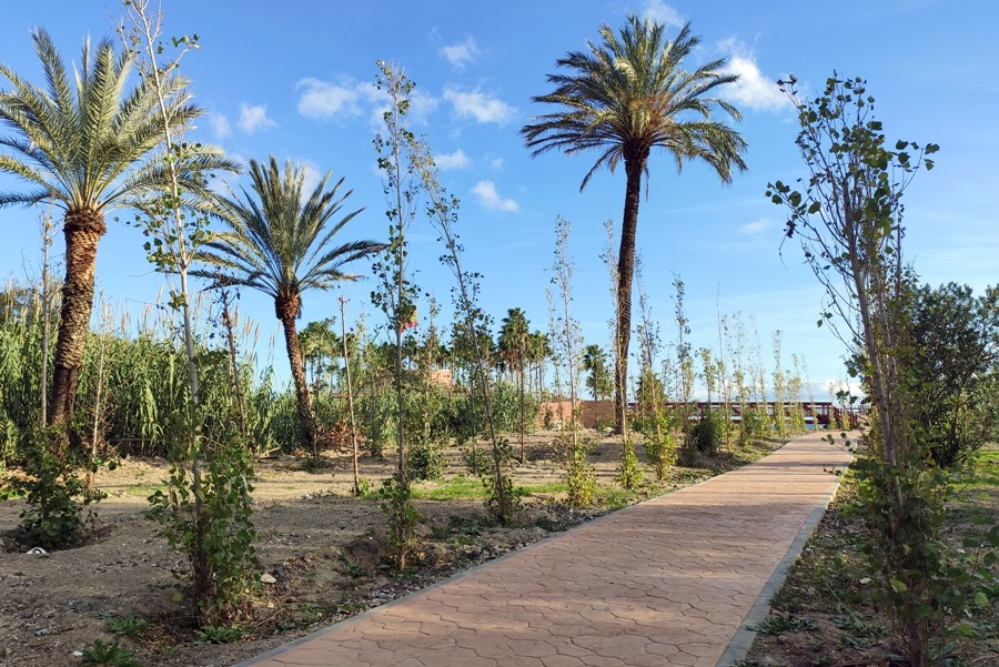 Estepona Estepona El Ayuntamiento de Estepona crea una nueva zona verde con un centenar de chopos junto al arroyo Taraje