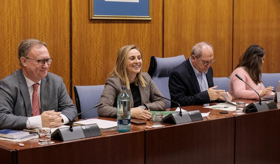 Actualidad Actualidad La Junta negocia con el CGPJ un nuevo convenio contra los desahucios en casos de emergencia social