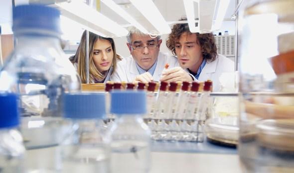 Actualidad Actualidad Economía de la Junta moviliza más de 85 millones en ayudas para la investigación científica y empresarial