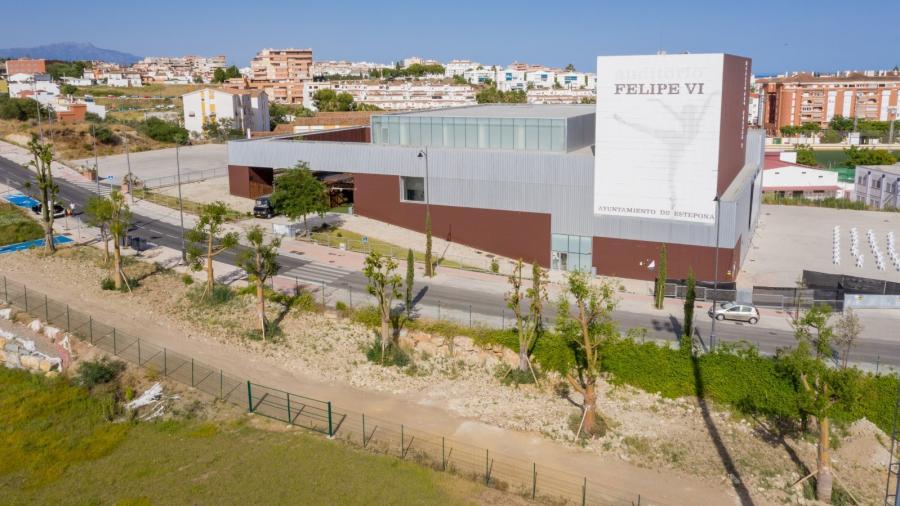 Estepona Estepona Los 35 árboles de gran valor ecológico que se trasladaron desde la plaza del ajedrez de Estepona por las obras del nuevo aparcamiento han enraizado a la perfección en sus nuevas ubicaciones
