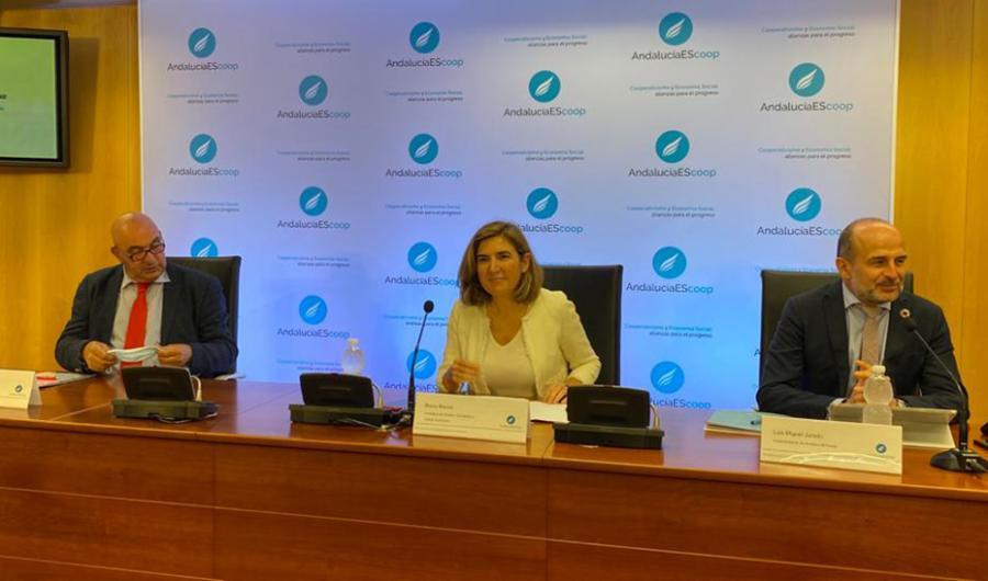 Actualidad Actualidad Andalucía registra 62 nuevas cooperativas durante el estado de alarma pese a la parálisis económica