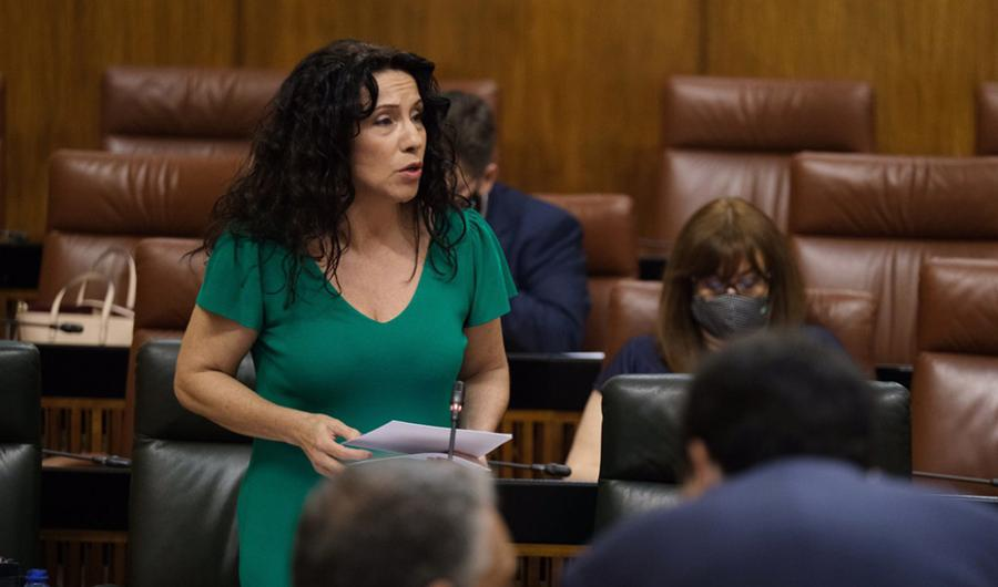 Actualidad Actualidad La Renta Mínima andaluza alcanza en junio su récord histórico con 17,3 millones para 20.000 familias