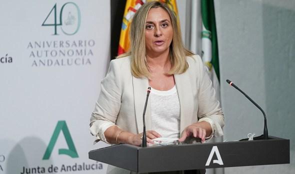 Actualidad Actualidad La Junta tiene en curso ocho programas de viviendas por un importe de 230 millones