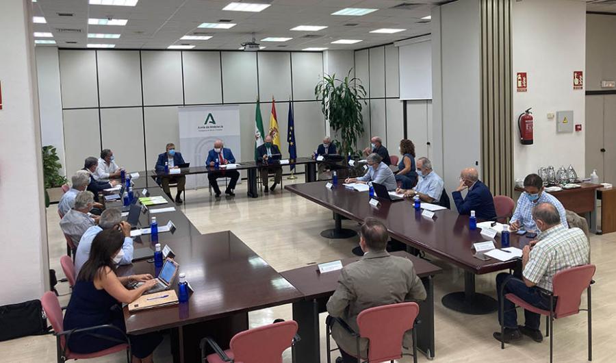 Actualidad Actualidad Constituido el Comité Asesor Externo para el balance de gestión y propuestas de mejora ante el Covid-19