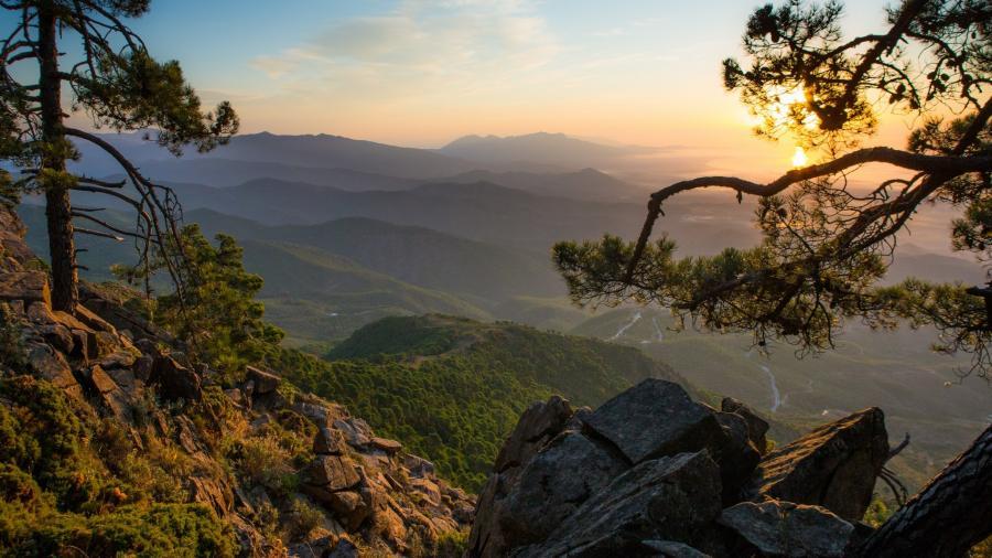 Estepona Estepona Estepona celebra el Día Mundial del Turismo con acciones destinadas a promocionar su entorno natural