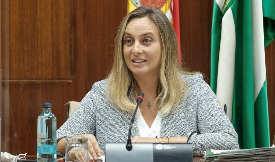 Actualidad Actualidad La Junta destina ayudas para la construcción de 2.064 viviendas en alquiler en Andalucía