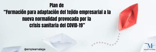 Malaga Malaga La Diputación de Málaga lanza un plan de formación para ayudar al tejido empresarial a adaptarse a la nueva realidad surgida tras el Covid