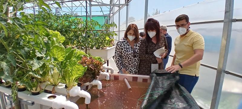 Malaga Malaga La Noria apoya el proyecto AlgaQua de producción de peces y algas para alimentación, cosmética o farmaceútica como buena práctica sostenible e innovadora
