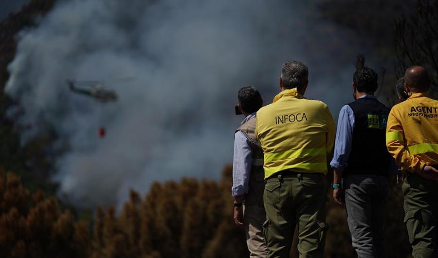 Actualidad Actualidad Moreno advierte que no pararán hasta detener a los autores de los incendios forestales y que éstos no podrán dormir tranquilos