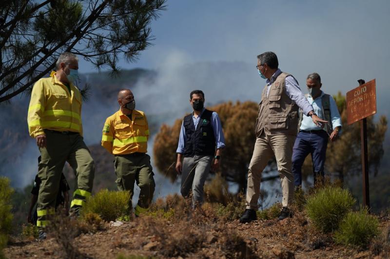 Malaga Malaga La Diputación pone sus técnicos a disposición de los municipios afectados por el incendio para valorar y reparar daños en infraestructuras básicas