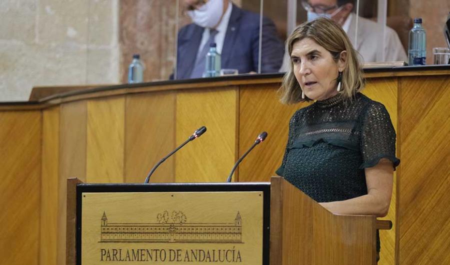 Actualidad Actualidad El Parlamento andaluz convalida el decreto que generaliza las ayudas a empresas en ERTE para mantener el empleo