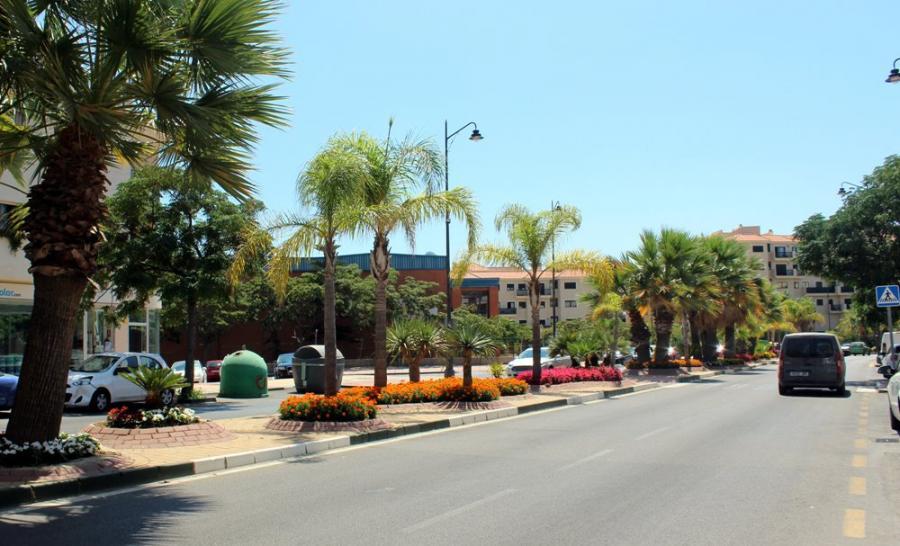 Estepona Estepona El Ayuntamiento de Estepona refuerza la jardinería de las principales avenidas de la ciudad