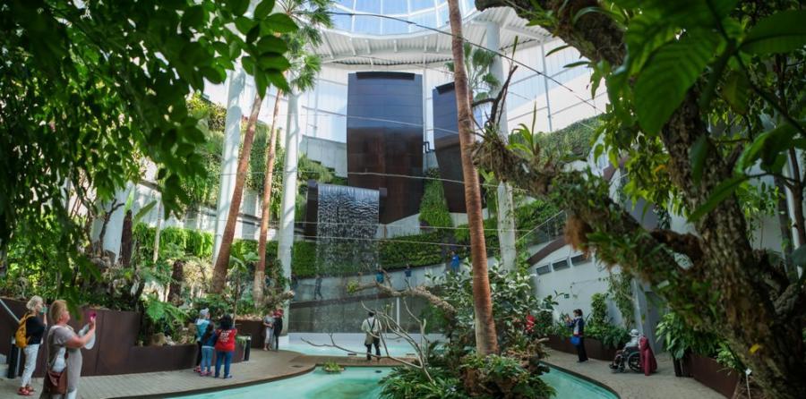 Estepona Estepona El Ayuntamiento de Estepona modernizará el Orquidario con una sala de exhibición y una aplicación móvil sobre las especies