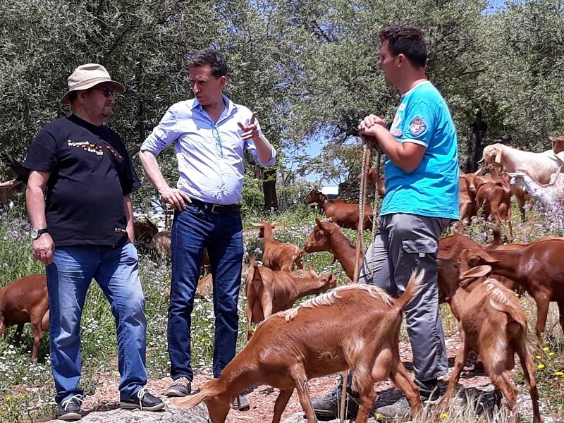 Actualidad Actualidad La Diputación de Málaga y Cicerones Rurales editan un manual para fomentar el agroturismo en la provincia