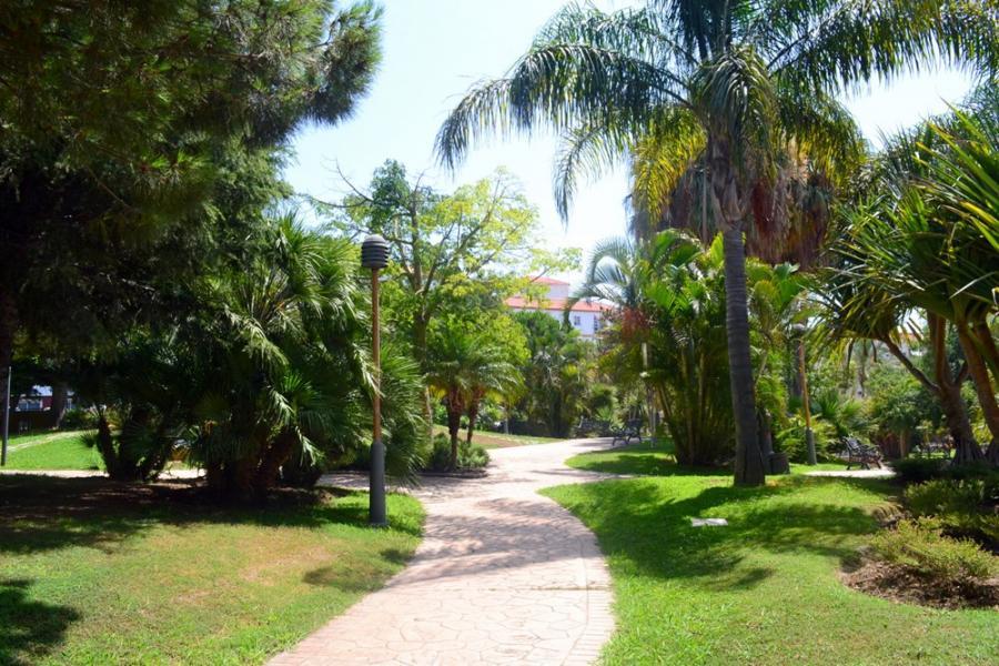 Estepona Estepona El Ayuntamiento de Estepona avanza en el 'Plan Árbol' con la plantación de más de 300 ejemplares ornamentales y de gran porte
