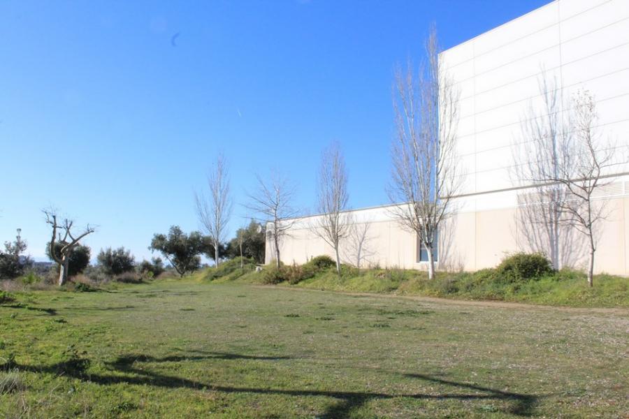 Mijas Mijas Ángel Nozal volverá a incluir la construcción de la piscina cubierta de La Cala en su programa electoral